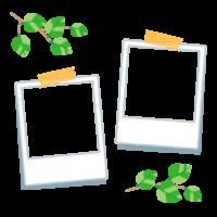 葉っぱと2枚のポラロイド写真のフレーム・枠イラスト