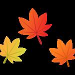 3枚のもみじの葉のイラスト