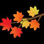 紅葉したもみじの葉と枝のイラスト