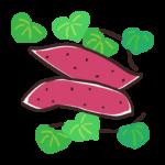 サツマイモと葉っぱのイラスト