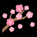 梅の花と枝のイラスト