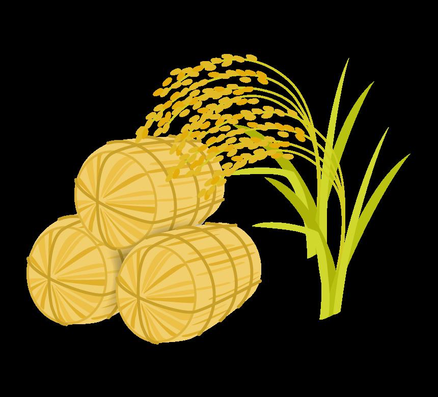 米俵と稲のイラスト