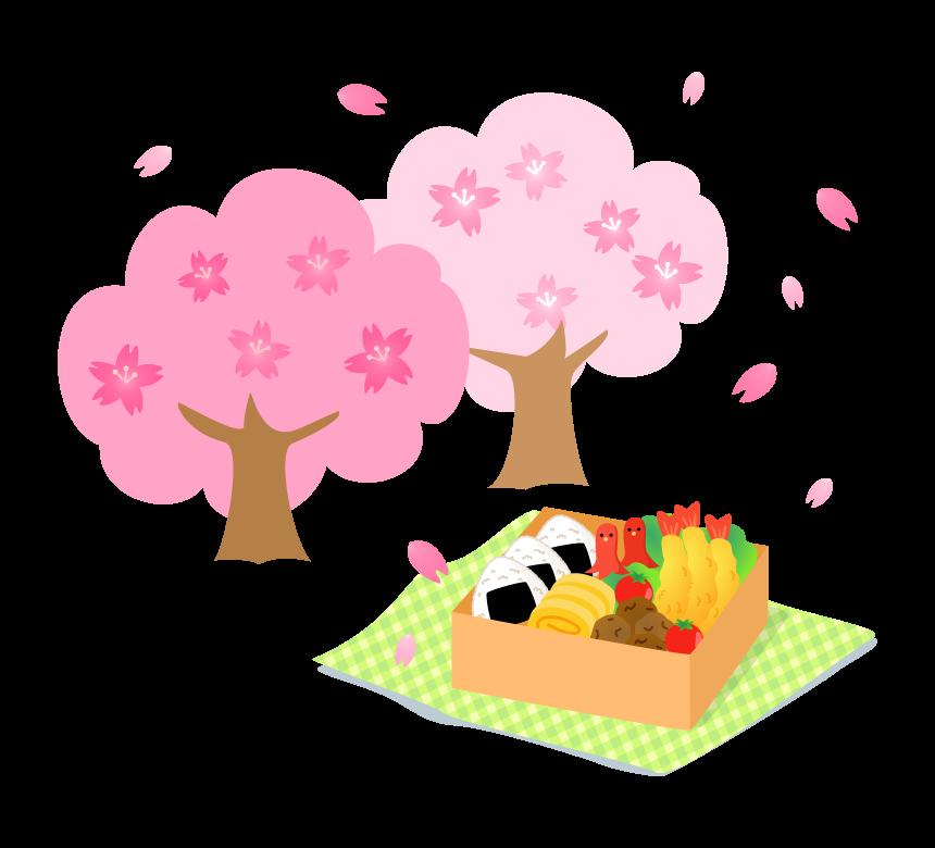 桜とお花見弁当のイラスト