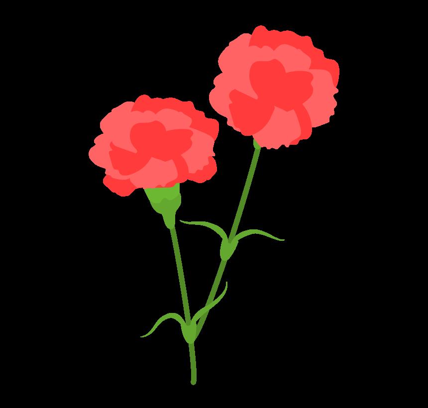 赤いカーネーションの花のイラスト