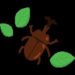 葉っぱとカブトムシのイラスト