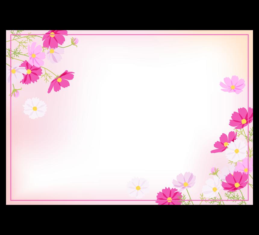 コスモス(秋桜)のピンクのふんわり四角フレーム・枠イラスト
