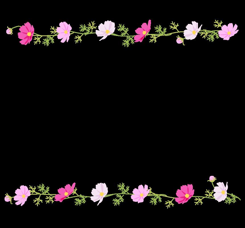 コスモス(秋桜)の上下フレーム・枠イラスト
