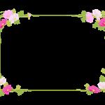 コスモス(秋桜)の四角飾りフレーム・枠イラスト