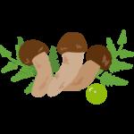 3本の松茸のイラスト