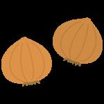 2個の玉ねぎのイラスト